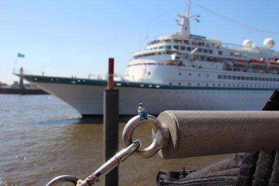 """HafenCity: """"Seefahrer"""" vor Kreuzfahrtschiff"""