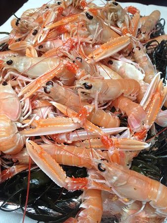 County Tipperary, Ireland: dublin bay prawns
