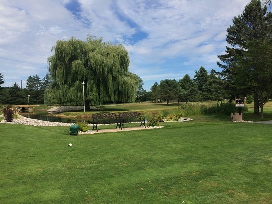 Westport, Kanada: 8th Tee off here at Evergreen