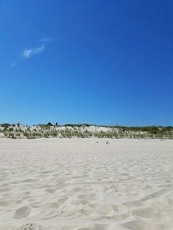 Seaside Park照片
