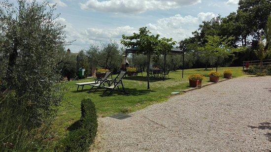 Acquaviva di Montepulciano, İtalya: Poggio Olivo
