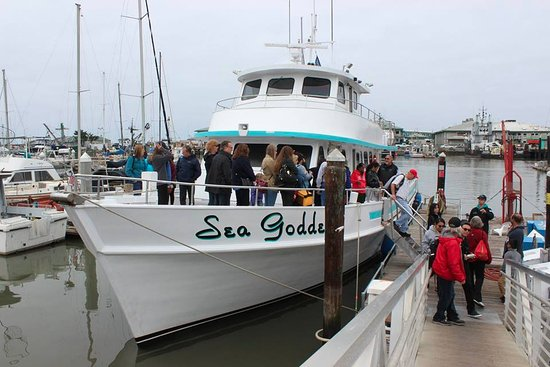 Moss Landing, CA: Disembarking after an awesome trip August 2016