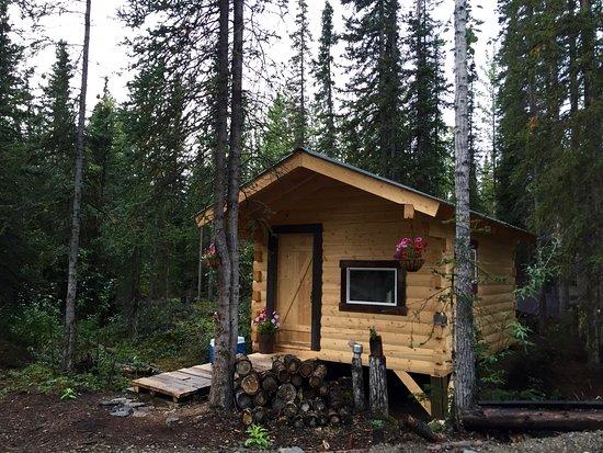 McCarthy, AK: Cabin