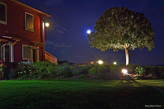 Tuscania, Italië: notturna
