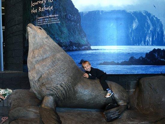 Alaska Islands and Ocean Visitor Center: photo0.jpg