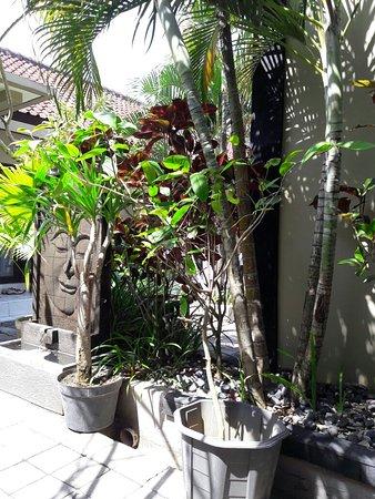 Legian Guest House Bali: 20160727_113757_large.jpg