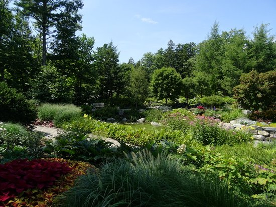 Coastal Maine Botanical Gardens: Even in drought, it was in good shape.