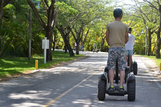 Puntacana Ecotours: The run
