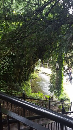Mother Shipton's Cave and The Petrifying Well: 20160828_132945_large.jpg
