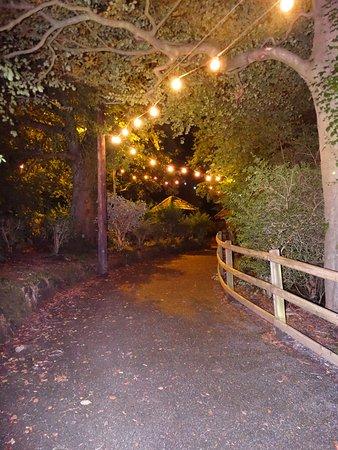 Douglas, UK: Lighted Path