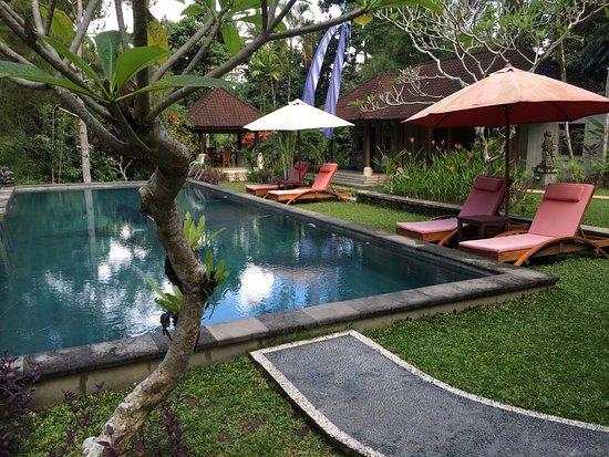 Suara Air Luxury Villa Ubud: Piscine commune