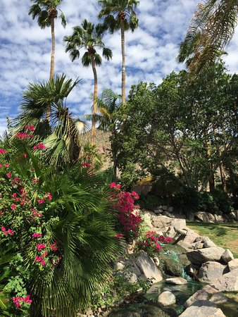 The Canyon Suites at The Phoenician: Incredible send off from the staff. One bedroom suite (Room #8318). Pristine nature trials. Top