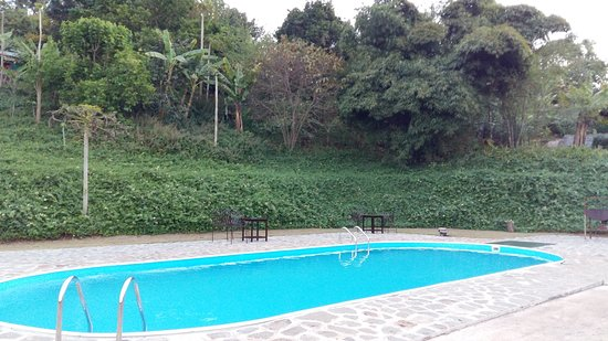 Endoro Lodge : Zona piscina