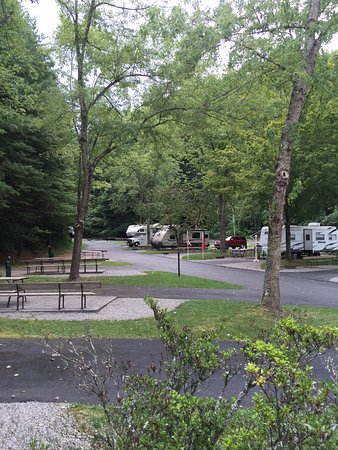 Twin Creek RV Resort: Back in sites on stream