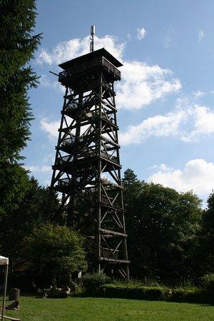 Rosengarten, เยอรมนี: Der Elbblickturm