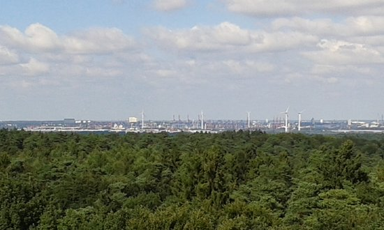 "Rosengarten, เยอรมนี: Die Fata Morgana ""Hamburg"""