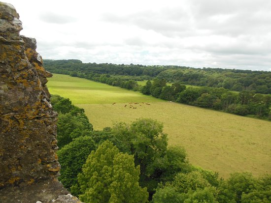 Castillo y Jardines Blarney: another pic I took while on the top of castle
