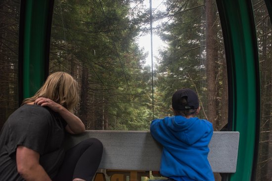 Klamath, CA: Gondola is an amazing experience.