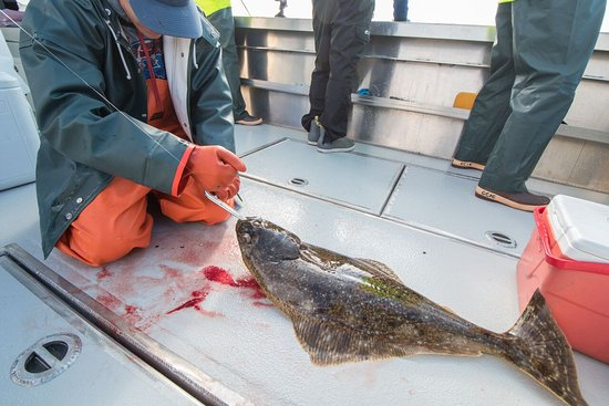Sitka, AK: Halibut Fishing Trips