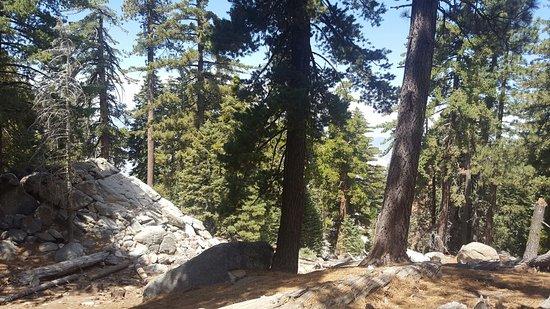 Idyllwild, CA: 20160827_131039_large.jpg