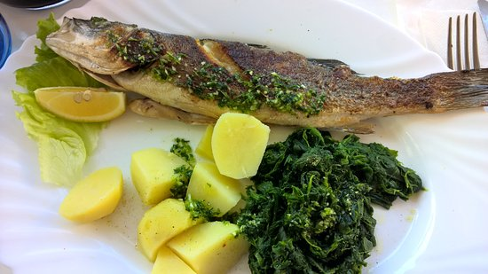 Cervar Porat, Croacia: sea bass