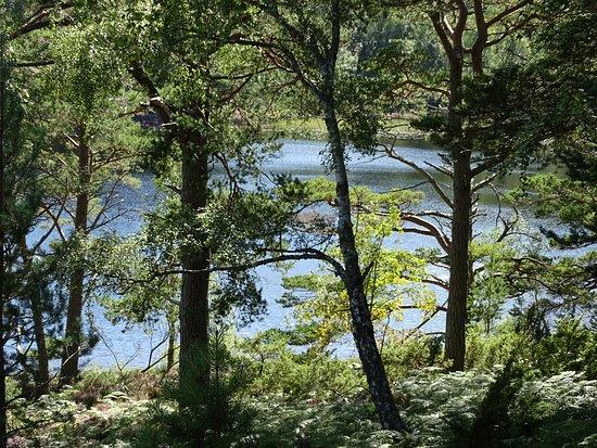 Aviemore, UK: Loch Eilein
