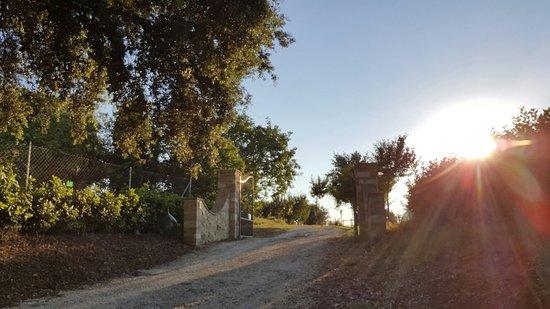 Lugnano in Teverina, อิตาลี: Casale Le Ghiande