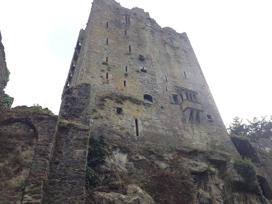 Castillo y Jardines Blarney: photo1.jpg