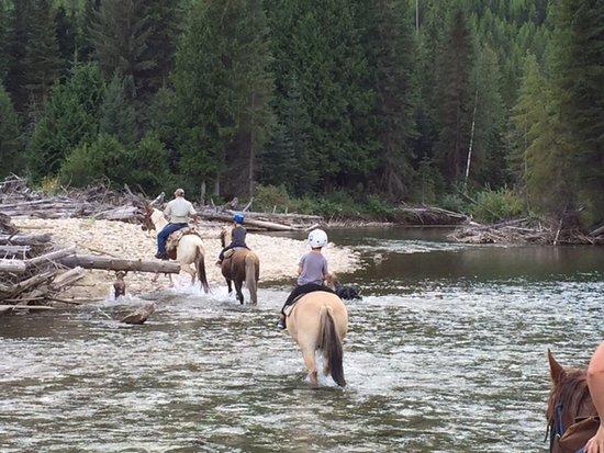 Cranbrook, Canada: One of the beautiful river crossings
