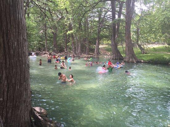 Wimberley, TX: Blue Hole, Aug 2016