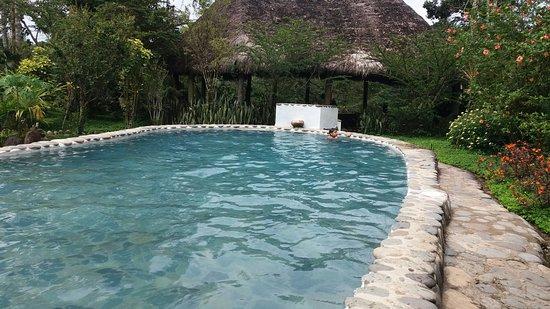 France Amazonia: 20160827_103221_large.jpg