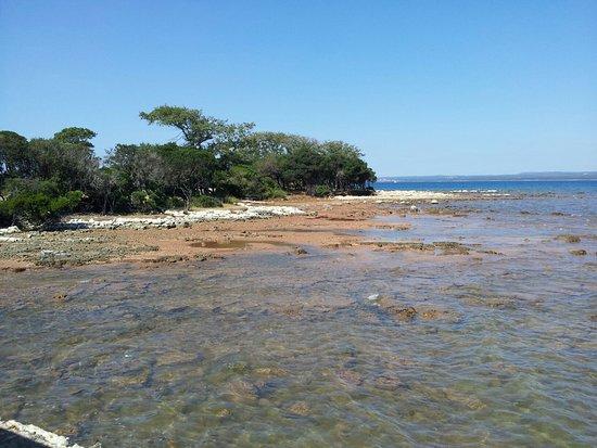 Brijuni National Park