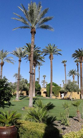 Litchfield Park Bild