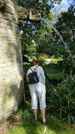 Westonbury Mill Water Gardens: 20160829_135914_large.jpg