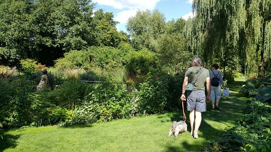 Westonbury Mill Water Gardens: 20160829_142328_large.jpg