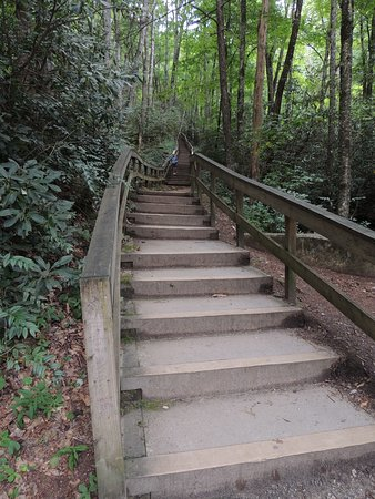 Mingo Falls: stairs up