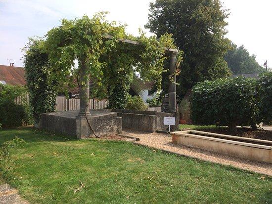 Fishbourne Roman Palace: photo8.jpg