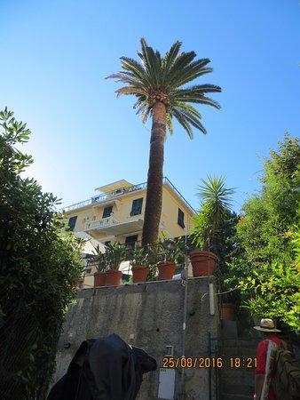 Hotel Villa Anita Picture