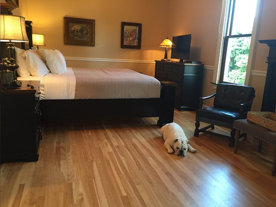 Painesville, OH: 207- Companion Room (Pet Friendly)