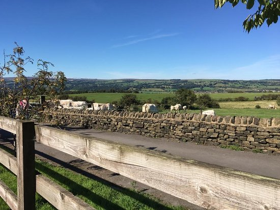 Ilkley, UK: Last week we stayed until sun down. Great for star gazing!