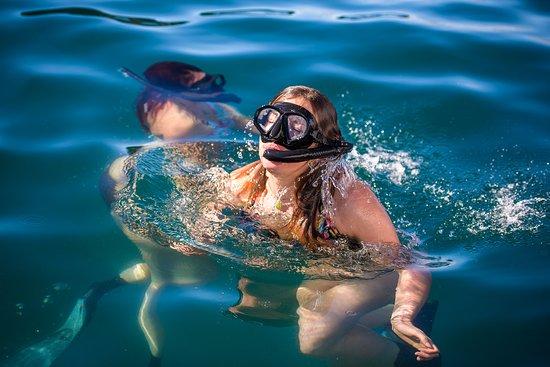 Whakatane, نيوزيلندا: Crystal Clear Waters Moutohoroa Island (Whale Island)