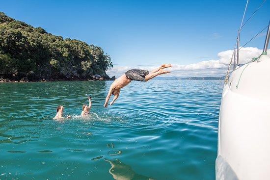 Whakatane, نيوزيلندا: Moutohoroa Island (Whale Island)