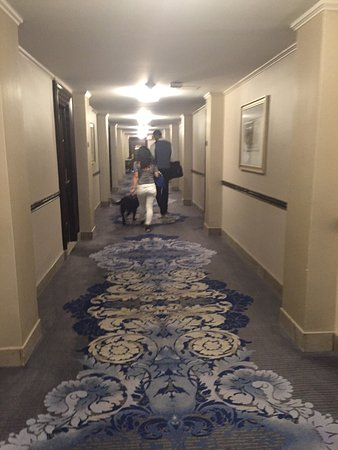 ザ フェアモント コープリー プラザ ホテル, photo3.jpg