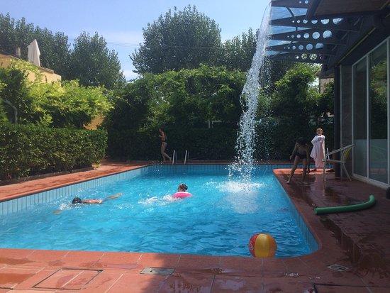 HOTEL CAROL   Reviews U0026 Price Comparison (Rimini, Italy)   TripAdvisor
