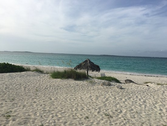 Paradise Bay Bahamas: photo0.jpg