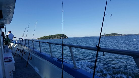 Islander Half-Day Fishing Trips: I'm definitely not a fisherman, but I caught a 27 inch cod on this awesome fishing trip during m
