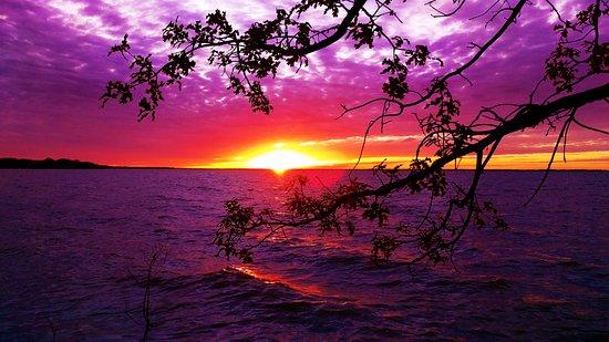 Sulphur Springs, TX: a quiet night at cooper lake.