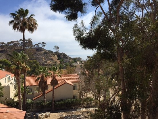 Catalina Canyon Resort & Spa: The ocean view from our balcony