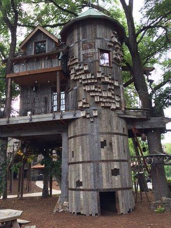 Lampe, MO: Tree house