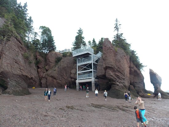 Hopewell Rocks Stairs Quite High
